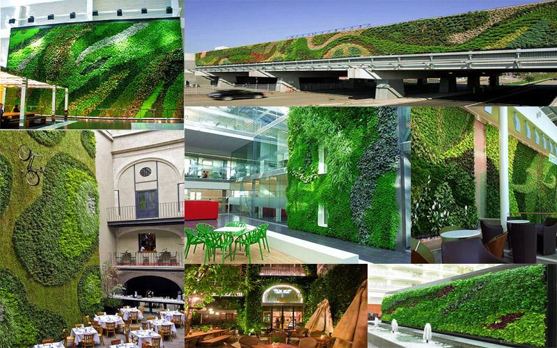 Mẫu tường cây, vườn đứng đẹp cho không gian sống - Tuongcaydep.vn